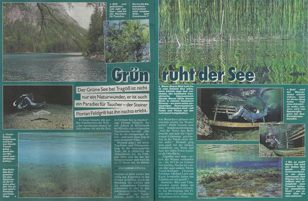Kronenzeitung Bericht Juni 2012