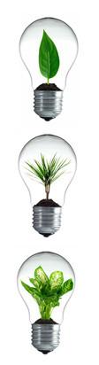 Nachhaltige Ideen