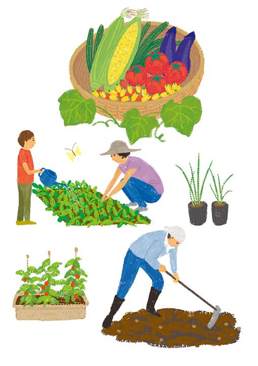家庭菜園 イラスト