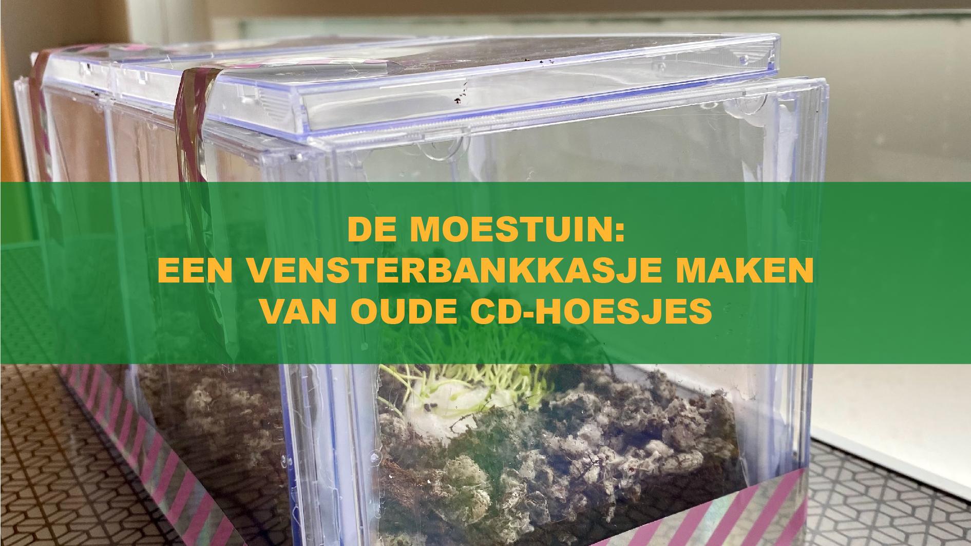 De Moestuin: Een Vensterbankkasje Maken Van Oude Cd-Hoesjes