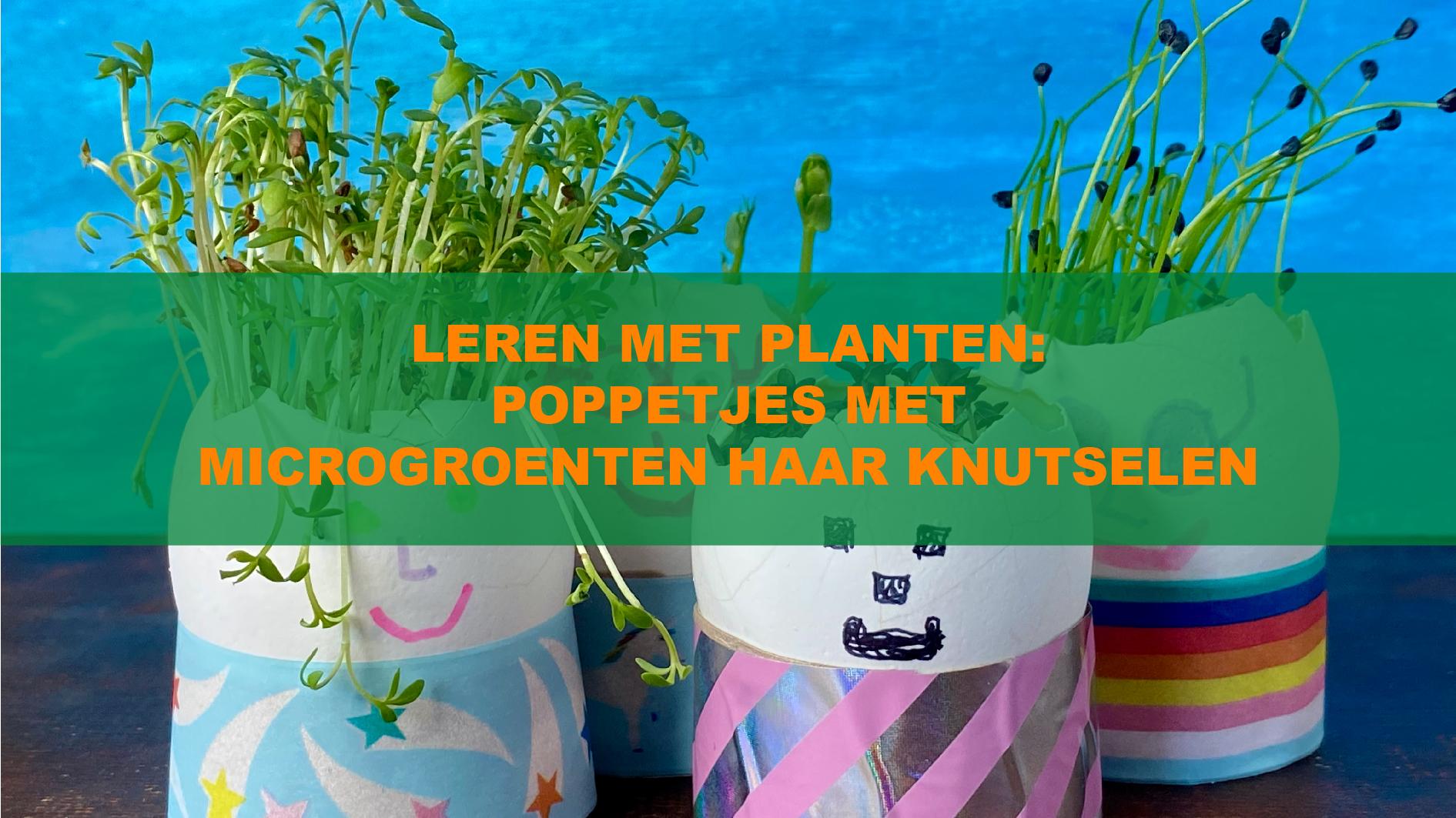 Leren met Planten: Poppetjes met microgroenten haar knutselen
