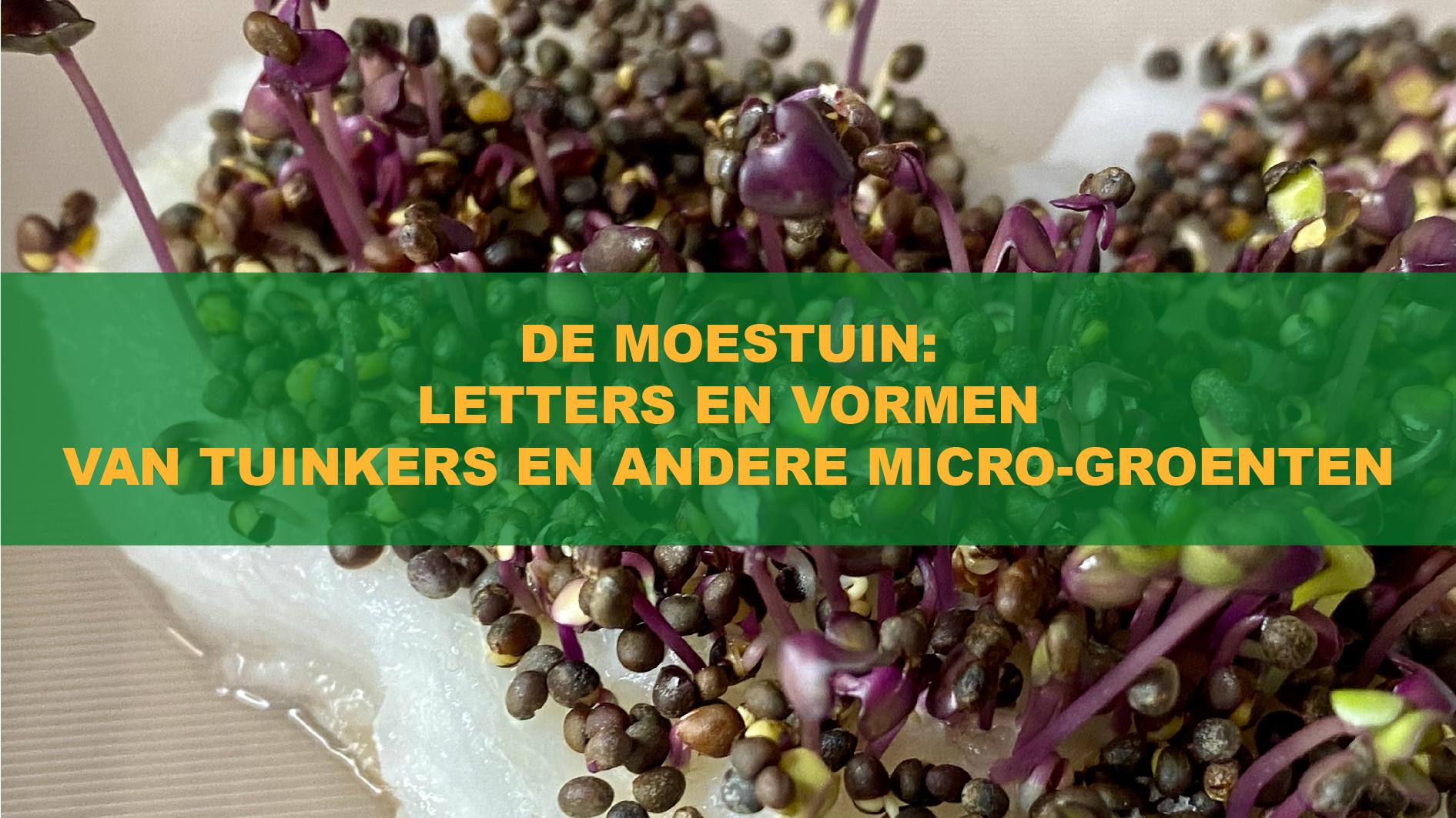 De Moestuin: Letters En Vormen Van Tuinkers En Andere Micro-Groenten