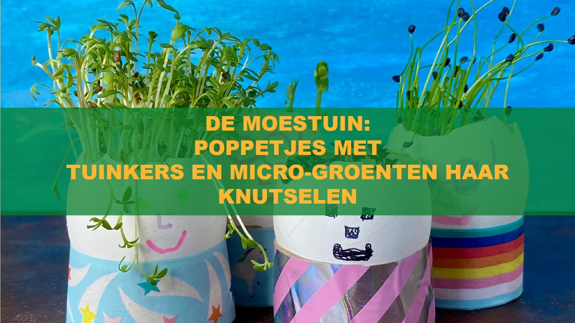 De Moestuin: Poppetjes Met Tuinkers En Micro-Groenten Haar Knutselen