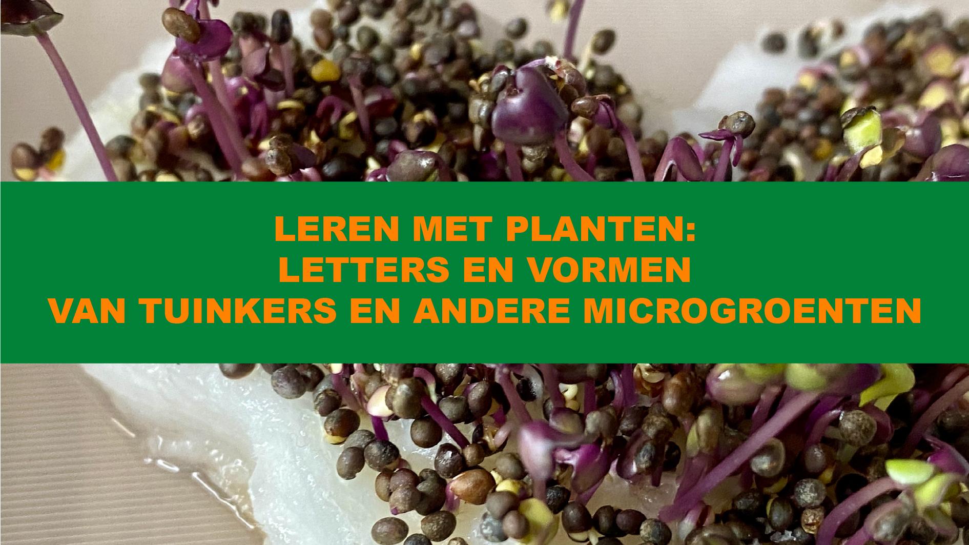 Leren met Planten: Letters en vormen van tuinkers en andere micro-groenten