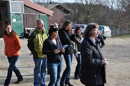 Zuschauer und Richter bei der Asphaltprobe bei der Stuteneintragung auf dem Sonnenhof