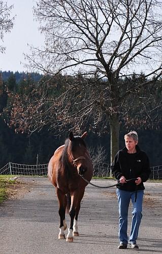Dr. Karin Naser mit Olympe des Aures bei der Asphaltprobe
