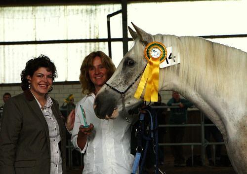 Ghazal, Gewinner des Wallachchampionats