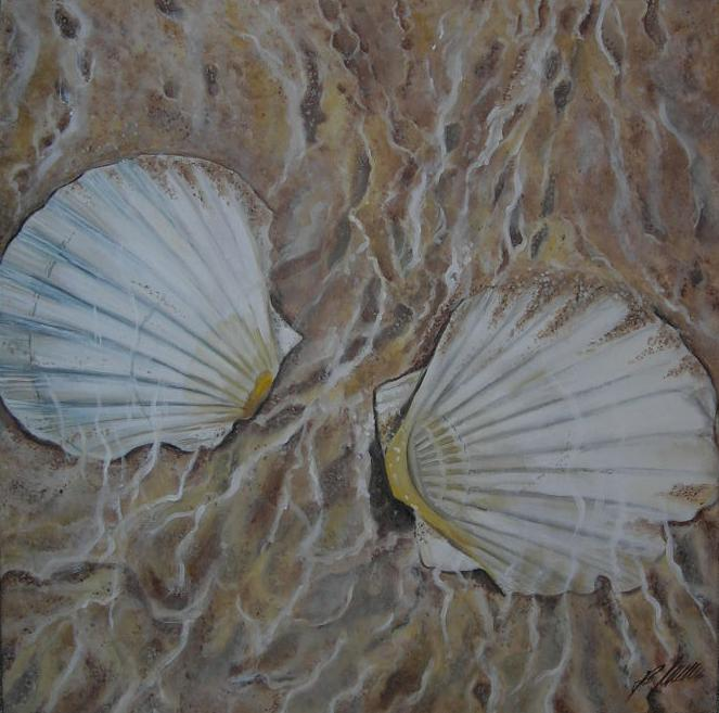 """2 Muscheln"" Acryl auf Leinwand 60 x 60cm."