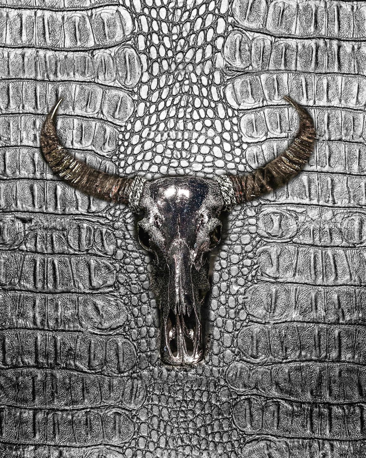 Buffalo, black silver