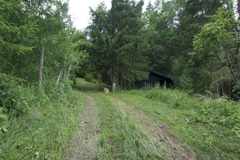 Vorbei an einer kleinen Hütte