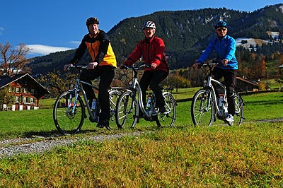 E-Bike Tour mit Gepäcktransport im Berner Oberland: Kandertal