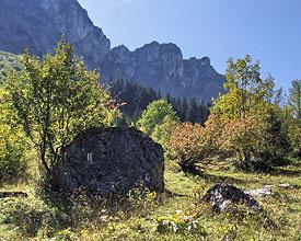 Weitwandern ohne Gepäck in der Westschweiz: Via Alpina Aufstieg zum Rocher de Naye