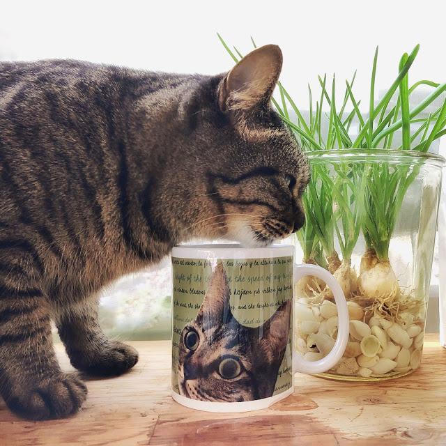 Tabby Cat / mug