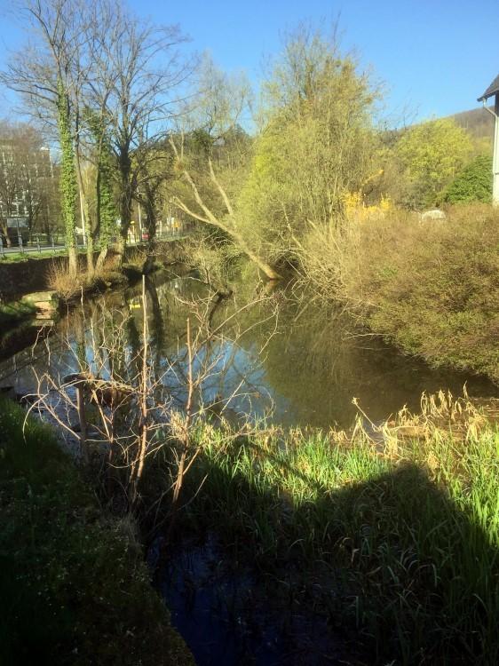 Der Feuergraben zu Goslar