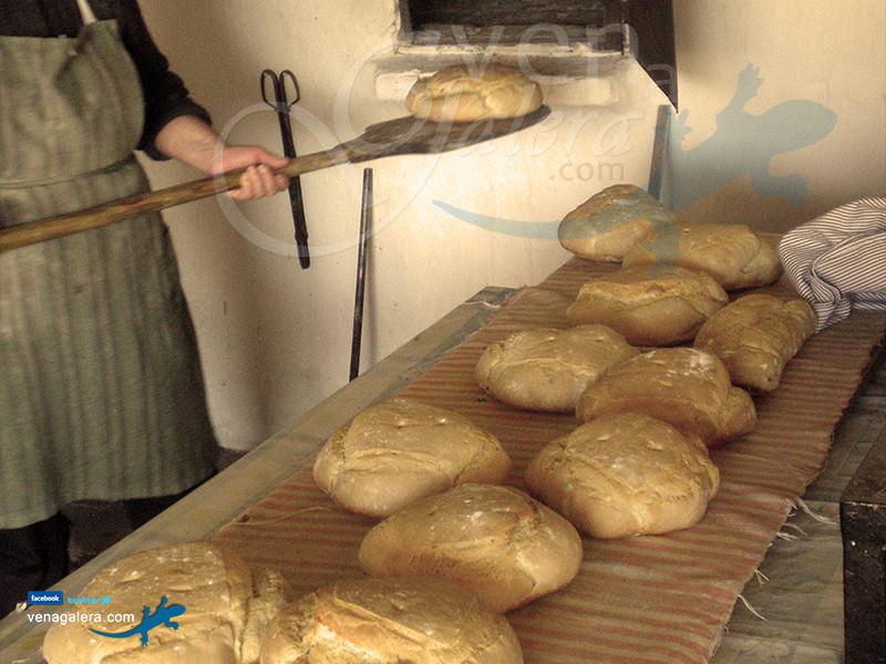 Gastronomía de Galera: Pan casero en horno de leña. Foto: @venagalera