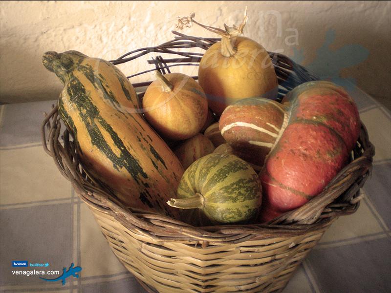 Gastronomía de Galera: Calabazas. Foto: @venagalera