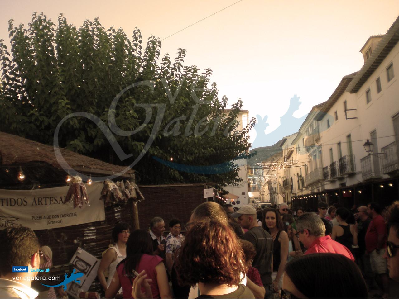 Mercado Argárico de Galera