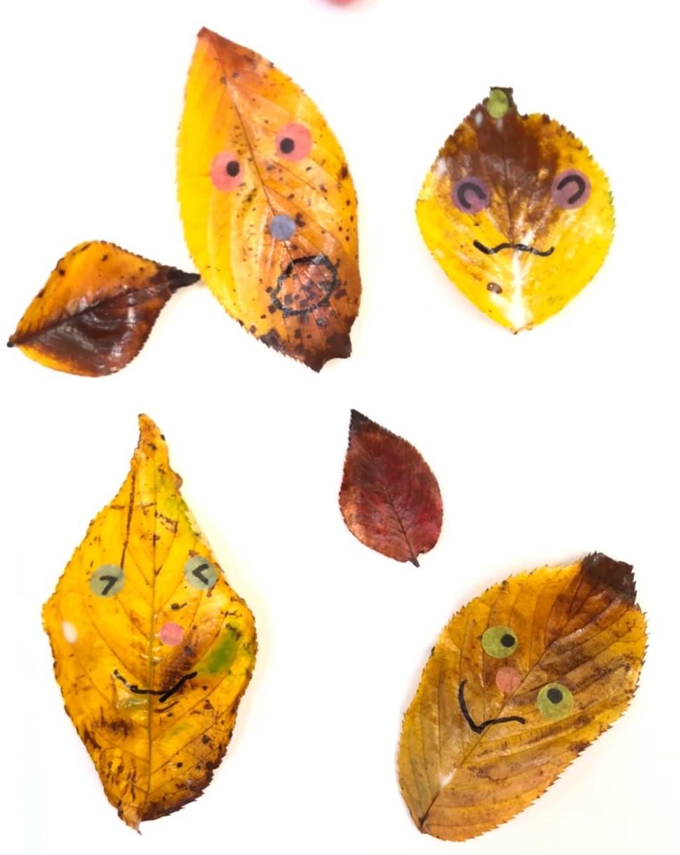 秋見つけ🍂