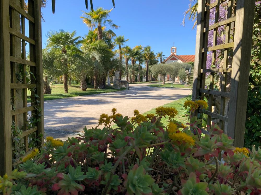 Le parc sous le soleil de décembre