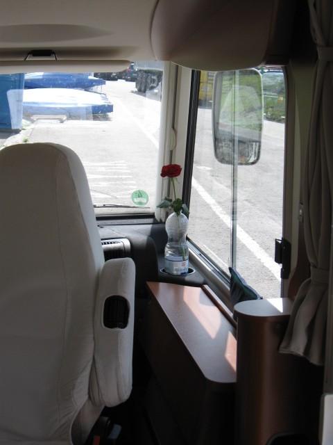 die Rose im Auto