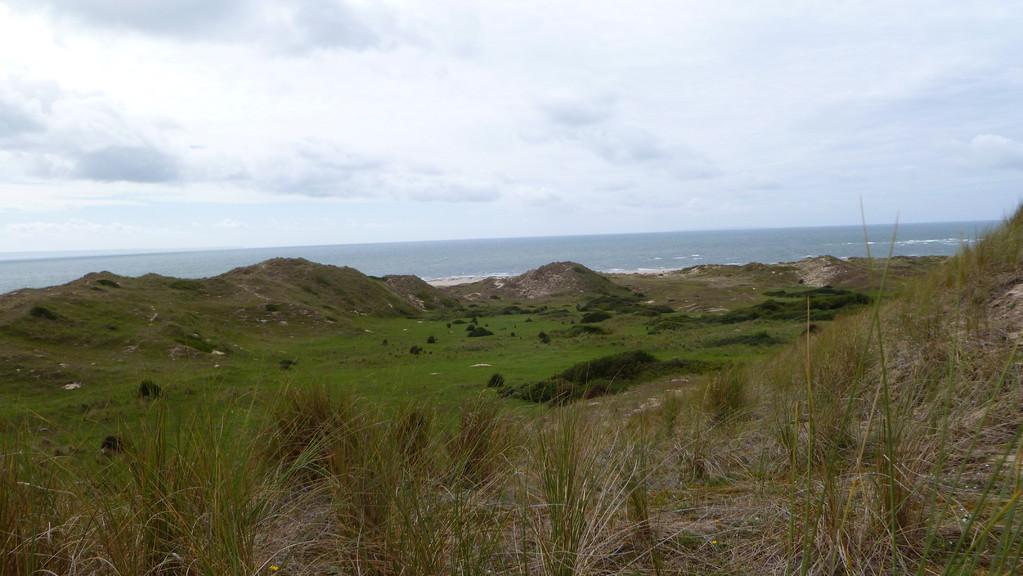 les dunes d'Hatainville