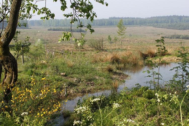 """Altitude 445   Ontdek de streek   De gemeente   De """"Aisne"""""""
