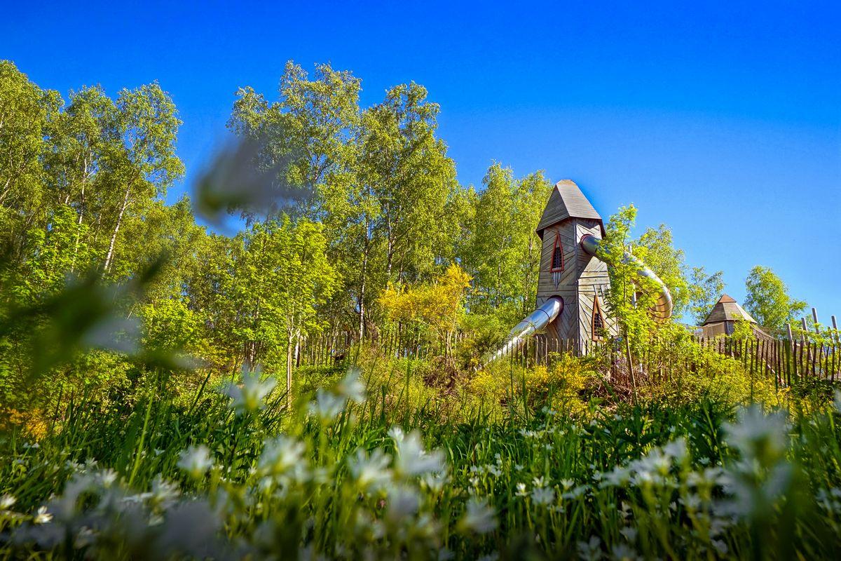 Altitude 445   Ontdek de streek   De gemeente   Chlorophylle, recreatief bospark in Dochamps   ©IDELUX-AIVE, Arnaud Siquet