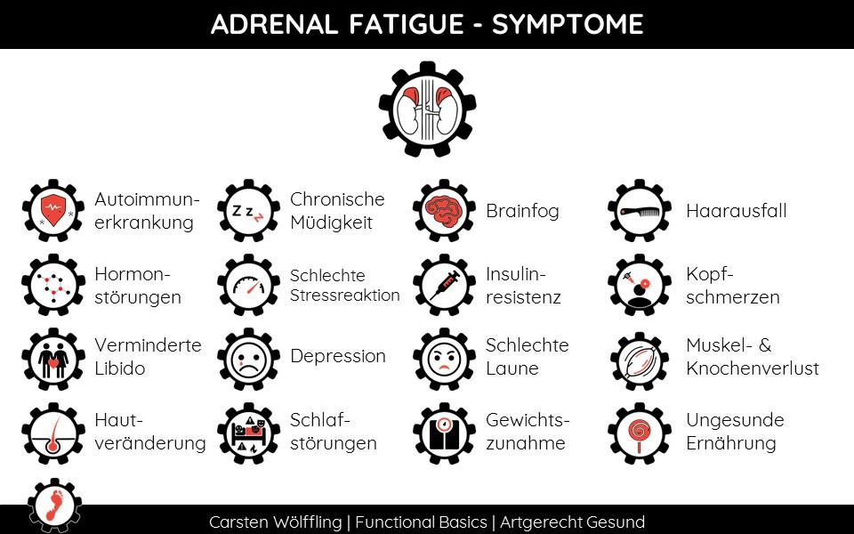 Adenal Fatigue Symptome