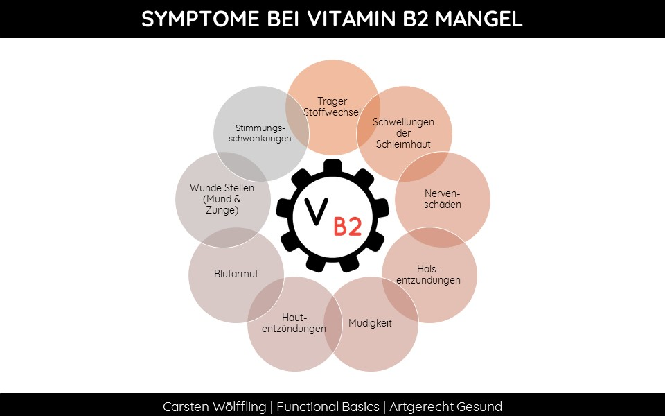 Symptome bei Vitamin B2 Mangel