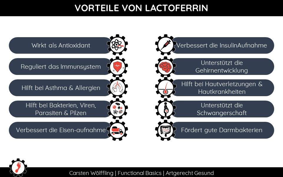 Warum ist Lactoferrin gesund?