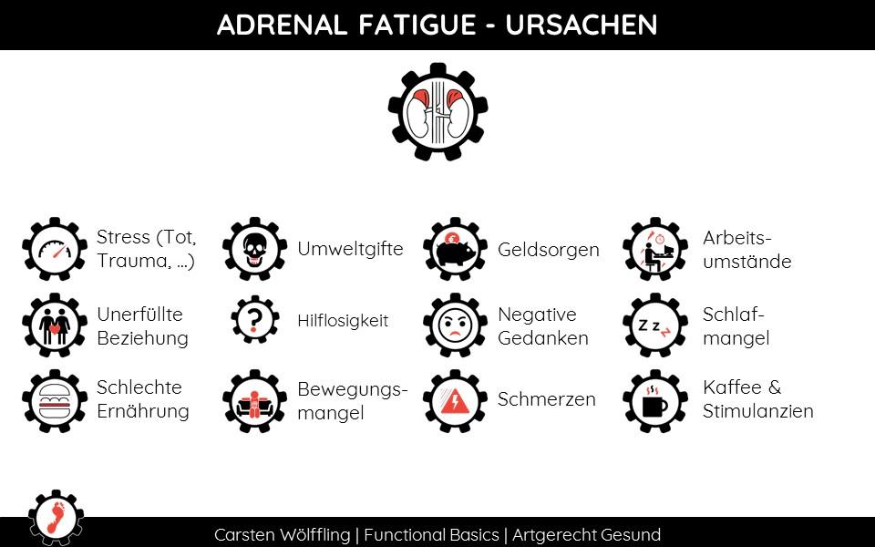 Adrenal Fatigue Ursachen