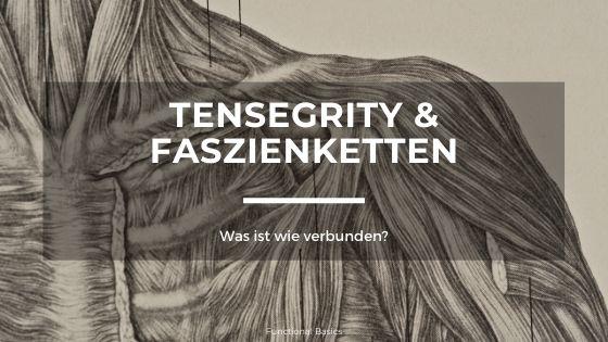Tensegrity & Faszienketten