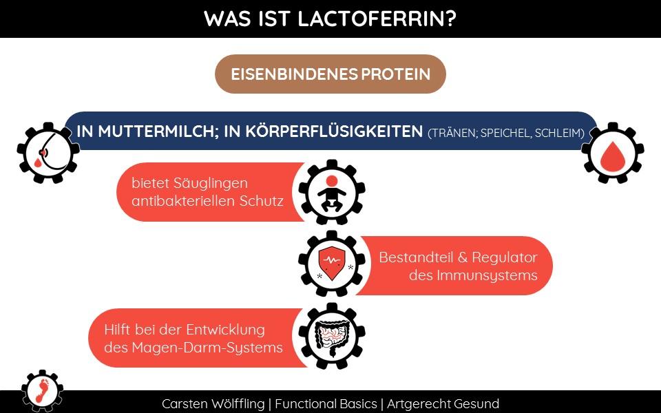 Was ist Lactoferrin?