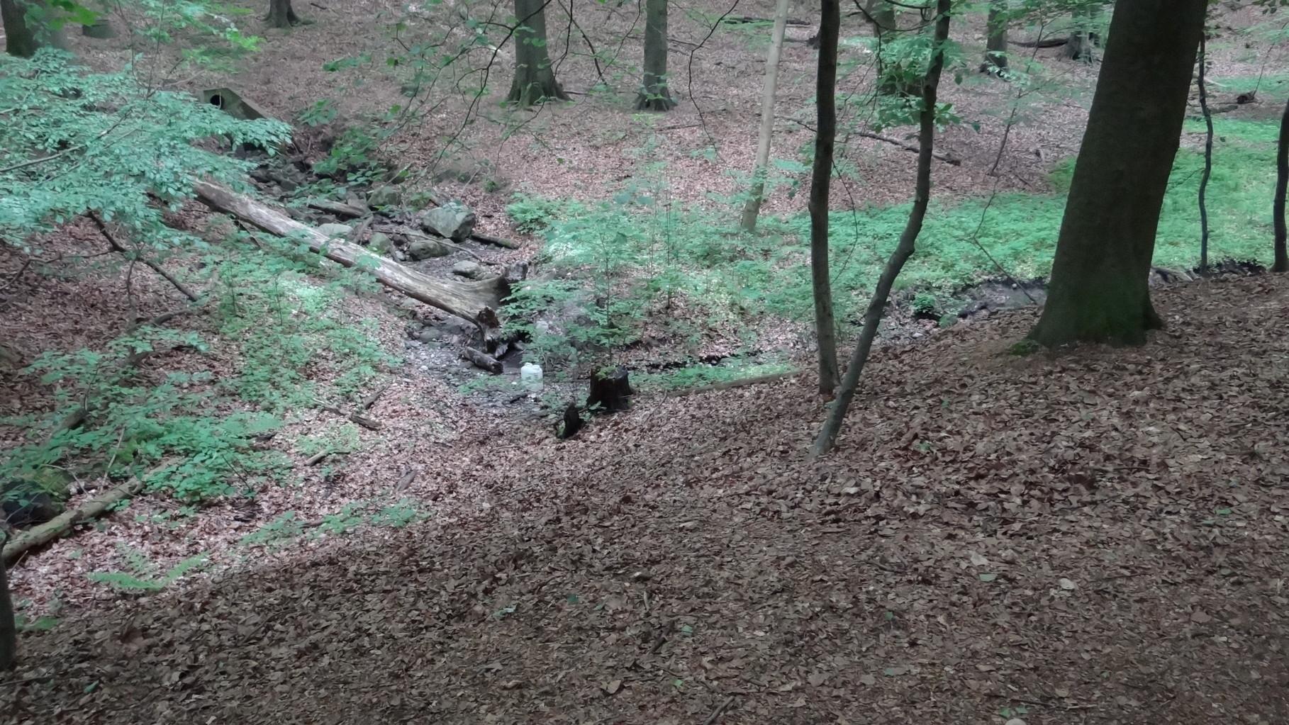 """Improvisierter """"Fluss"""", da die Dalbek ausgetrocknet war."""