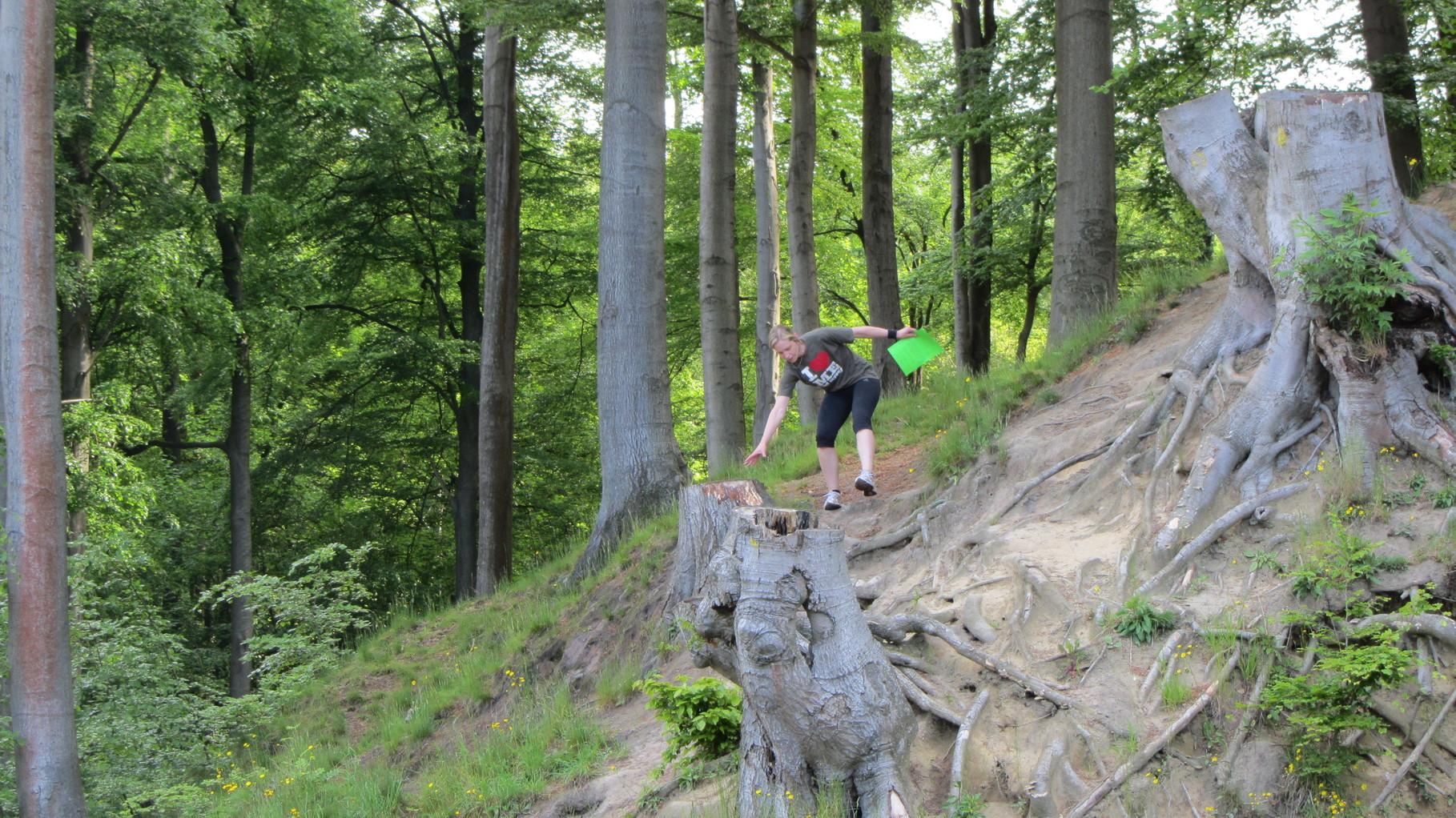 Hoch zu Berge