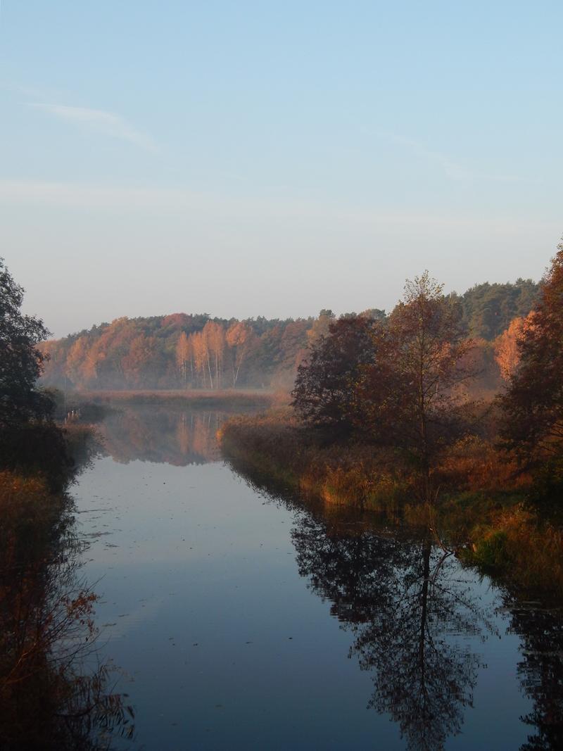 Templiner Kanal am Wiesenhof (Foto: Sven Heussen)