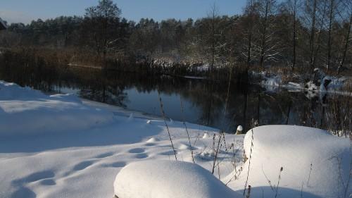 Hauswiese am Kanal im Winter.