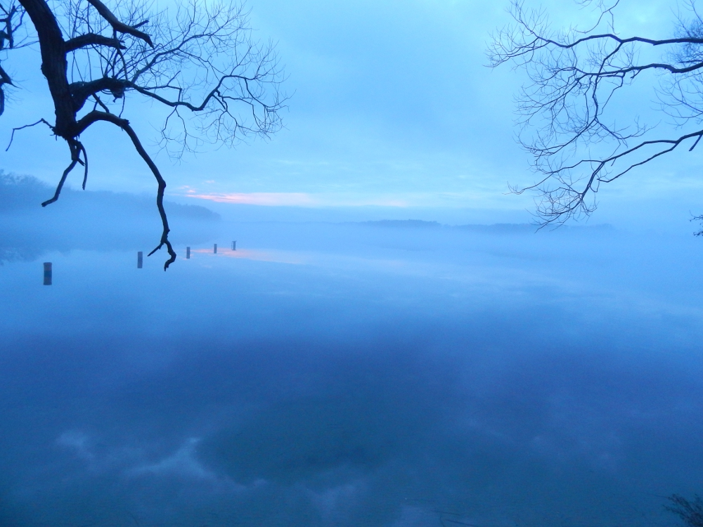 Röddelinsee im Winternebel (Foto: Sven Heussen)