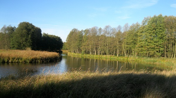 Havel Naturschutzgebiet.