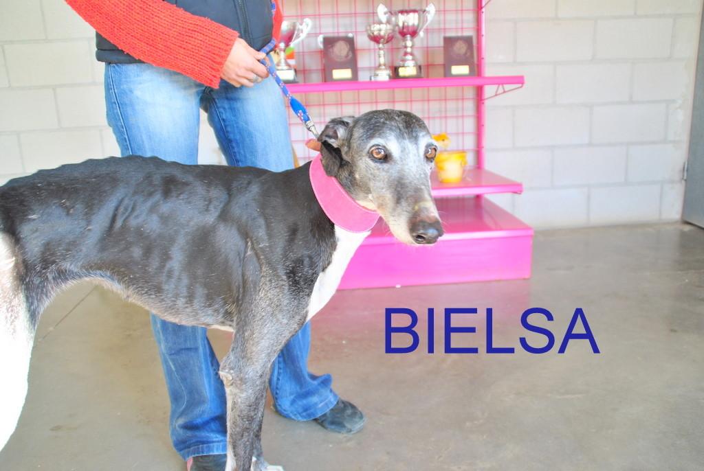 Bielsa