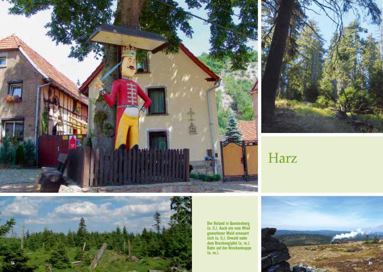Aufmacherseite Harz