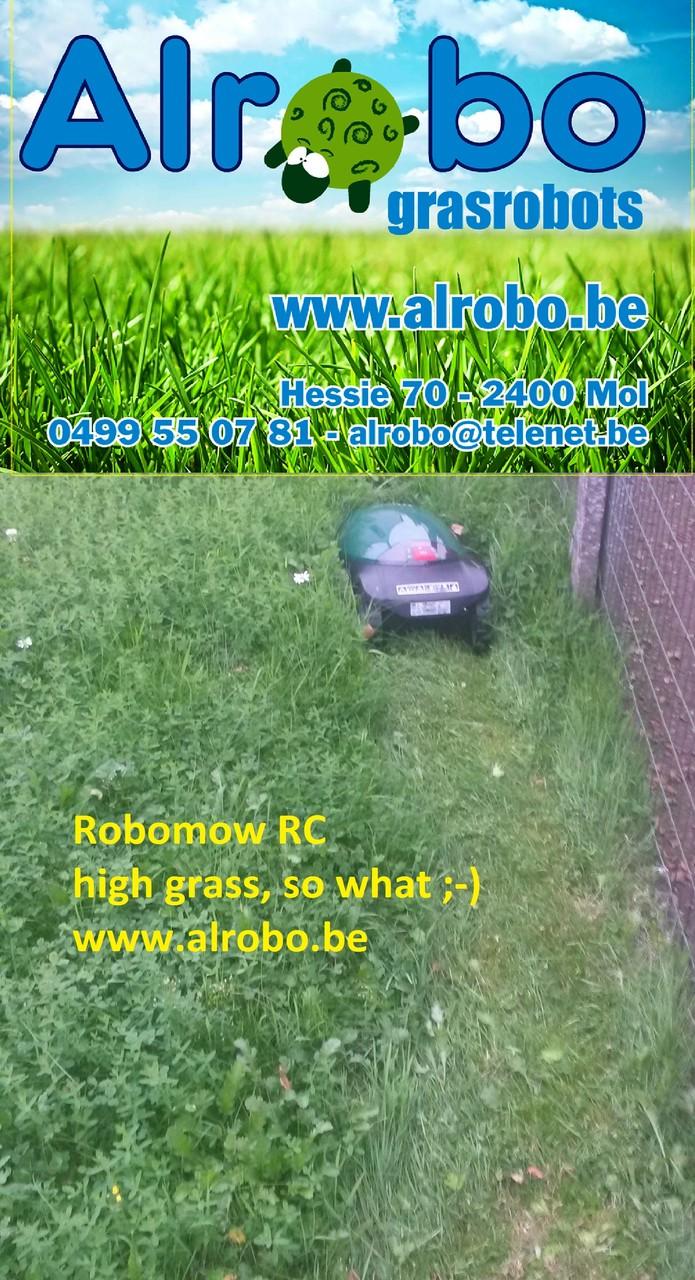 Alrobo RC304 in hoog gras