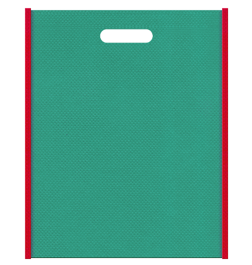 不織布バッグ小判抜き メインカラー青緑色とサブカラー紅色