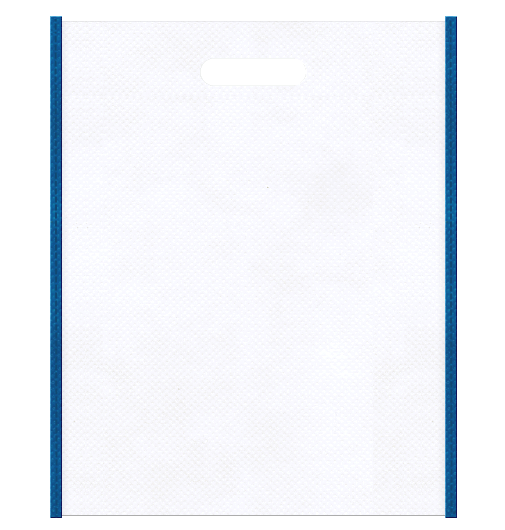 LED・人工知能セミナーの資料配布用にお奨めの不織布小判抜き袋のデザイン:メインカラー白色、サブカラー青色