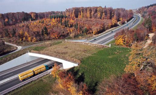Corridor à animaux passant au-dessus d'une autoroute. il en existe encore très peu sur notre territoire.