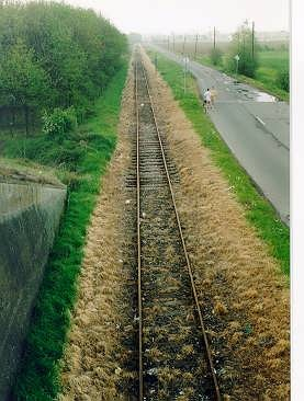 Exemple de voie ferrée. Autour des rails, rien ne pousse (les herbes ont jauni et sont mortes)  car de nombreux pesticides, très toxiques pour l'environnement sont utilisés chaque année pour empêcher l'herbe de pousser. Sources: wikipédia.
