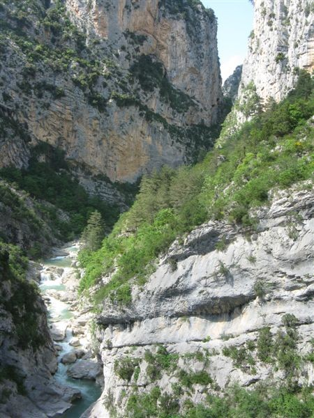 Les gorges calcaires du fleuve Hérault. Photo personnelle.