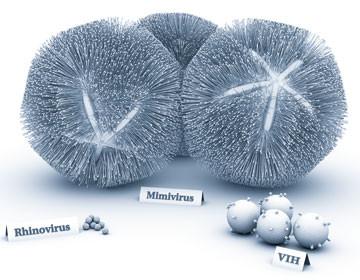 Une grande diversité de tailles chez les virus. Sources: Pour la science: http://www.pourlascience.fr/ewb_pages/a/article-les-virus-geants-29662.php