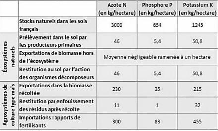 Bilans des entrées, restitutions et sorties d'azote, phosphore et potassium entre un agrosystème et un écosystème. Source : http://charles-peguy.net