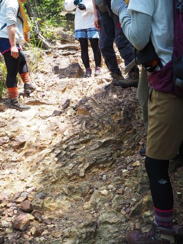 登りでは地質をみて